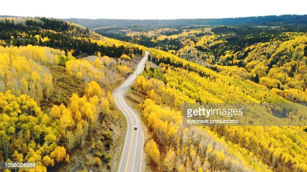 grand mesa national forest autumn color change in western colorado aerial view photo series - eyecrave  stock pictures, royalty-free photos & images