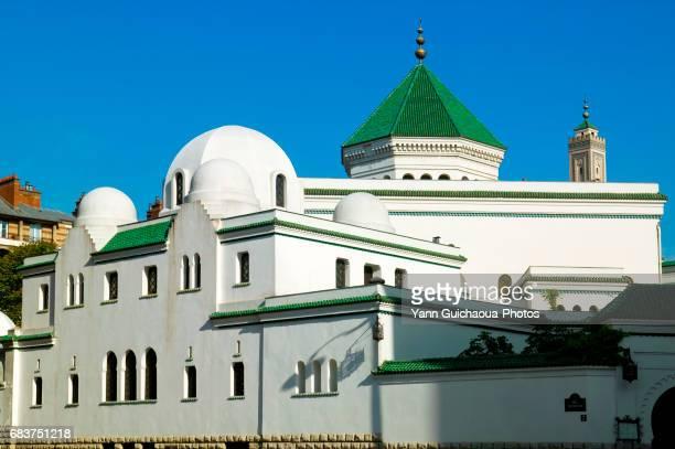 grand mosque of paris, france - mosquée photos et images de collection