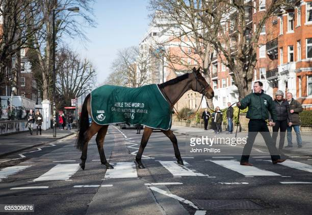 Grand National winner Rule The World stops off at Abbey Road Studios on his way from Ireland to The Victoria Albert Museum in London for the...
