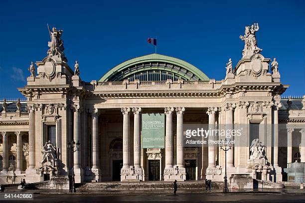 grand palais on winston churchill avenue in paris - グランパレ ストックフォトと画像