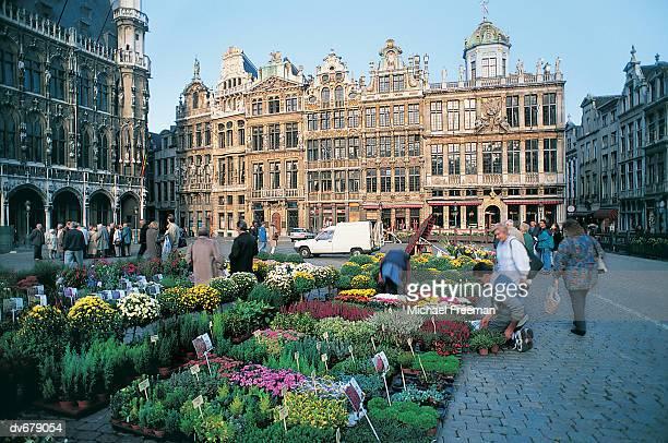 grand place, brussels, belgium - グランプラス ストックフォトと画像