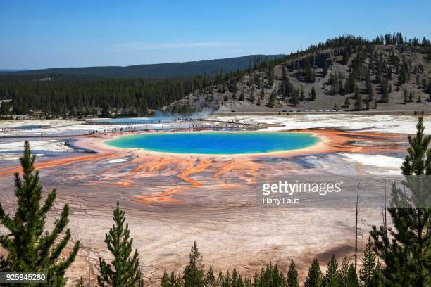 Grand Prismatic Spring, Midway Geyser Basin, Yellowstone National Park, Wyoming, USA