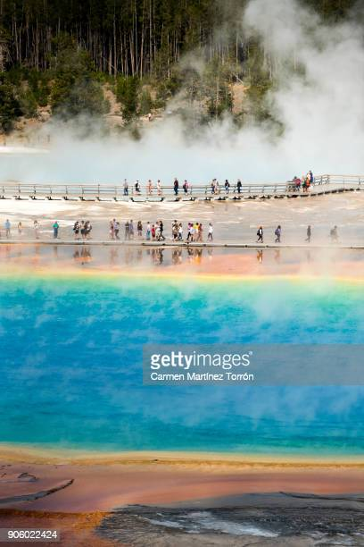 grand prismatic spring, yellowstone. - yellowstone river stock photos and pictures