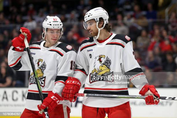 Grand Rapids Griffins center Turner Elson and Grand Rapids Griffins defenceman Jake Chelios on the ice during the second period of the American...
