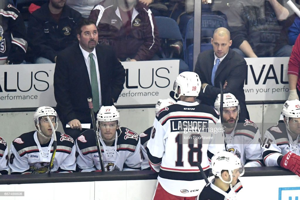 AHL: MAR 18 Grand Rapids Griffins at Chicago Wolves : News Photo