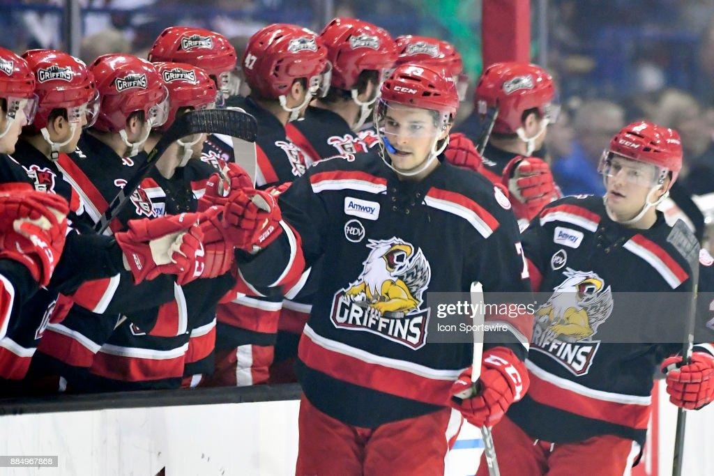 AHL: DEC 02 Grand Rapids Griffins at Chicago Wolves : News Photo