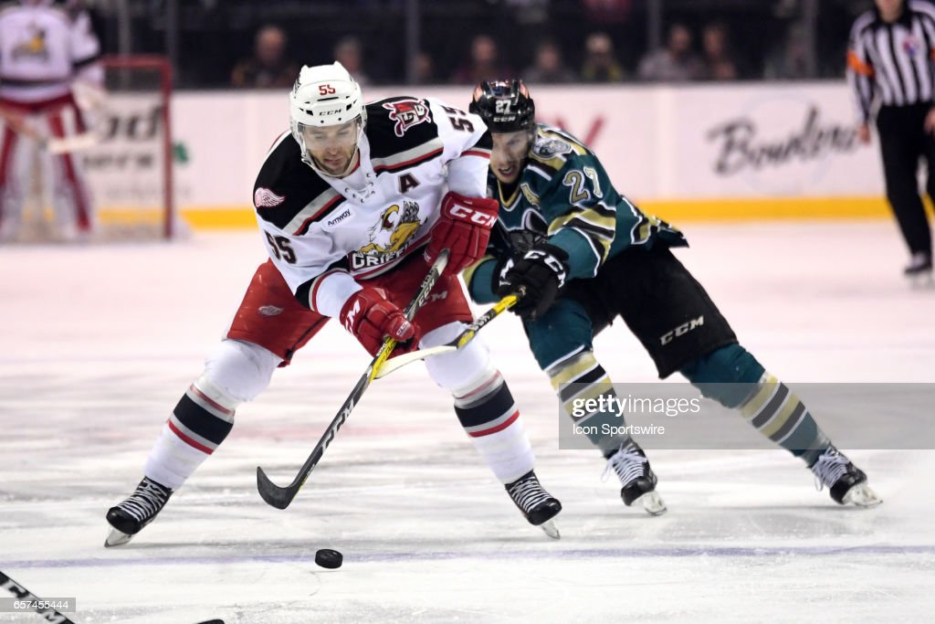 ahl: mar 18 grand rapids griffins at chicago wolves pictures | getty
