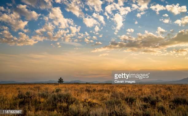 grand teton mountain at sunrise golden hour - ティトン山脈 ストックフォトと画像