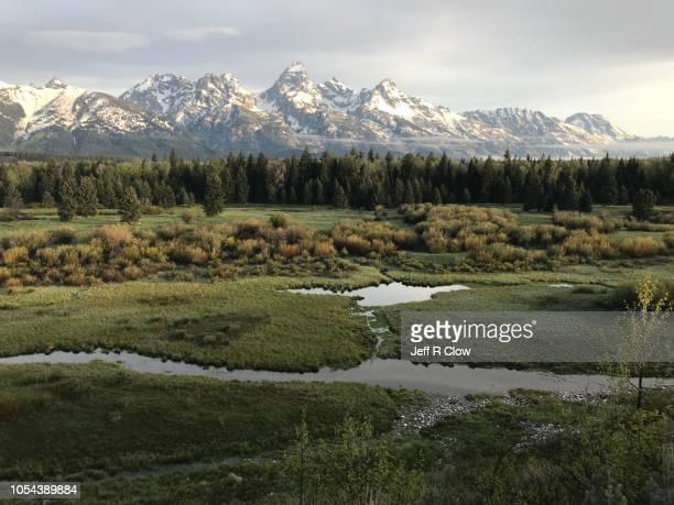 grand teton mountain range in jackson hole too - sagebrush stock pictures, royalty-free photos & images