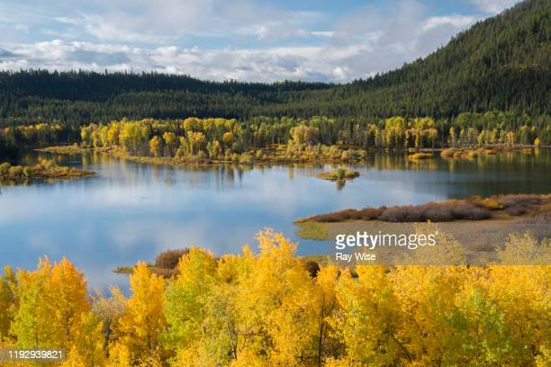 grand teton national park - snake river in autumn - グランドティトン国立公園 ストックフォトと画像
