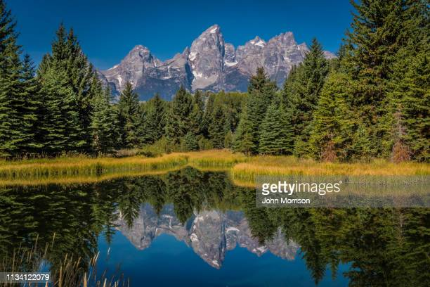 grand teton scenes in autumn with reflections - idaho stock pictures, royalty-free photos & images