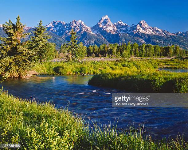 grand tetons national park - jackson hole stock pictures, royalty-free photos & images