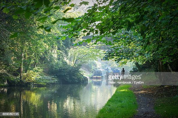 grand union canal amidst trees - northamptonshire stock pictures, royalty-free photos & images