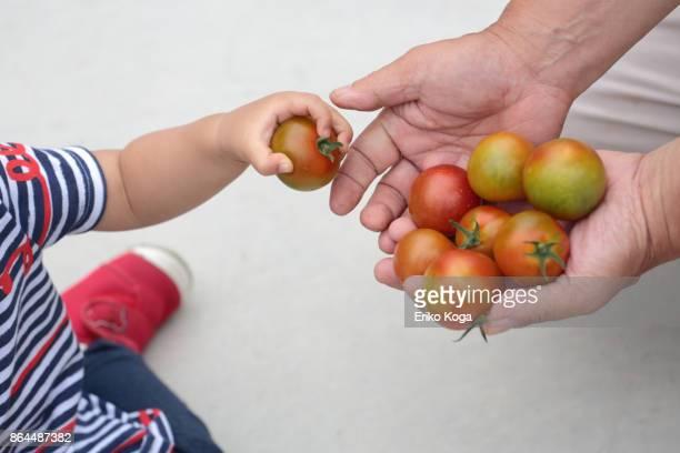 Granddaughter handing grandfather cherry tomato