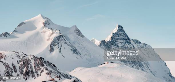 grande motte glacier in french alps - european alps stock pictures, royalty-free photos & images