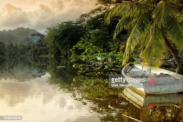 grande riviere, trinidad - trinidad and tobago stock pictures, royalty-free photos & images