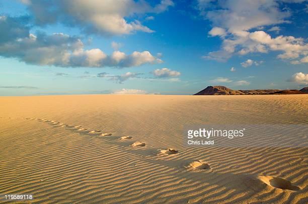 Grandes Playas, Corralejo, Fuerteventura, sand dunes
