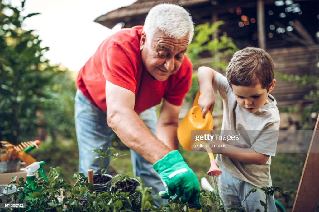 Grandfather and grandson in garden : Stock Photo