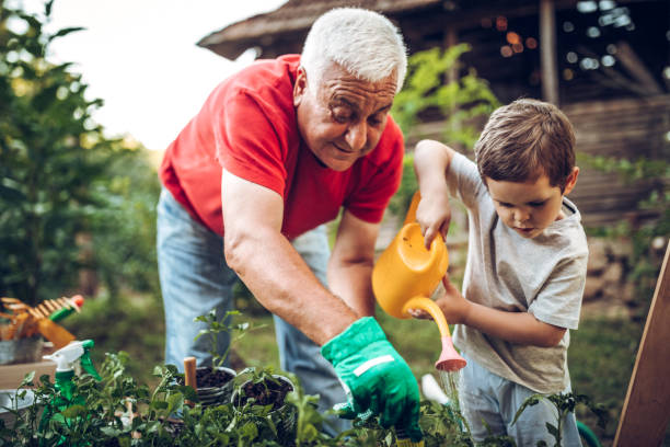 grandfather and grandson in garden - old man in garden stock pictures, royalty-free photos & images