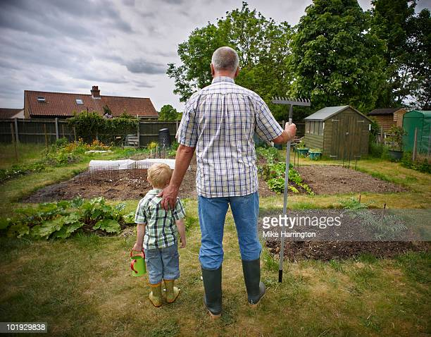 grandfather and grandson on allotment - norwich england stock pictures, royalty-free photos & images