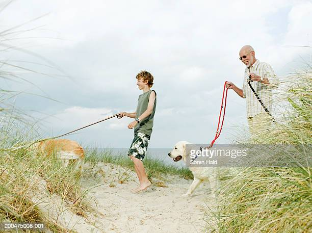 Grandfather and grandson (10-12) walking dogs on beach, smiling