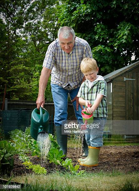 grandfather and grandson with watering cans - newhealth stock pictures, royalty-free photos & images