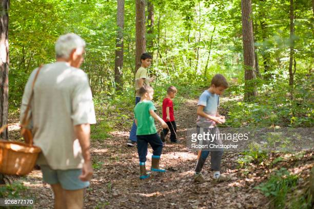 Grandfather and grandsons mushroom hunting in forest, Prievidza, Banska Bystrica, Slovak Republic