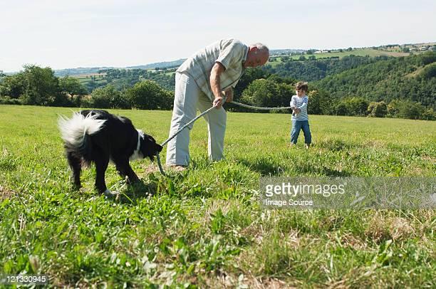 Großvater und beiden Enkel um, die spielen Tauziehen im Feld