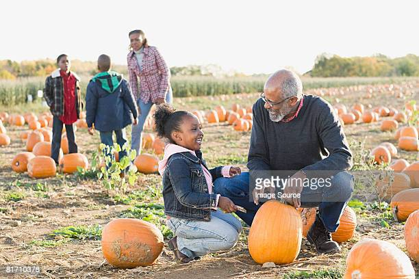 A grandfather and his granddaughter looking at pumpkins