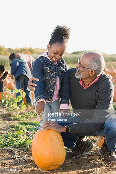 A grandfather and his granddaughter looking at pumpkins