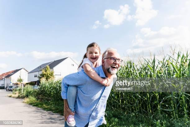 grandfather carrying granddaughter piggyback - aktivitäten und sport stock-fotos und bilder