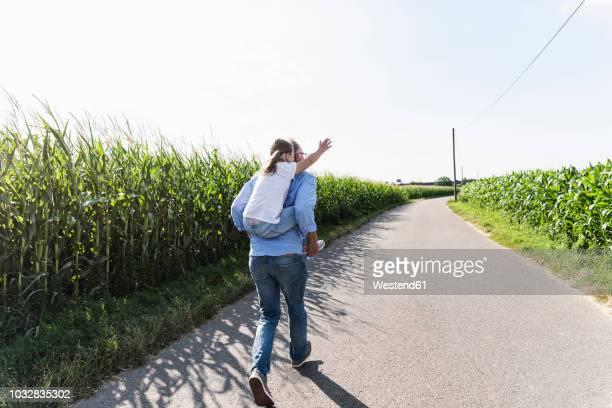 grandfather carrying granddaughter piggyback - cavalitas imagens e fotografias de stock