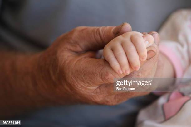 Grandfather holding hands with baby girl (6-11 months)