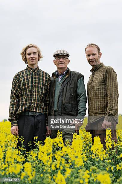 Grandfather son and grandson in yellow field