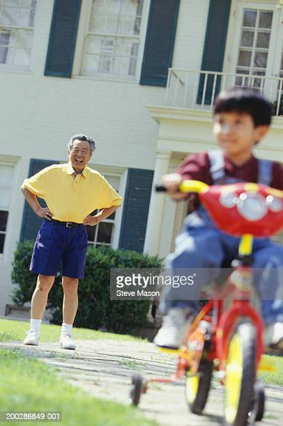 Grandfather watching grandson (3-4) riding bicycle in garden