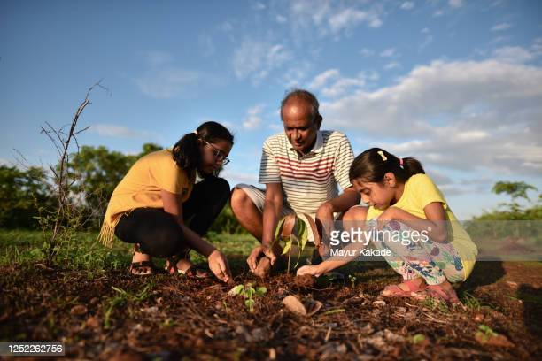 Grandfather with granddaughters planting a tree