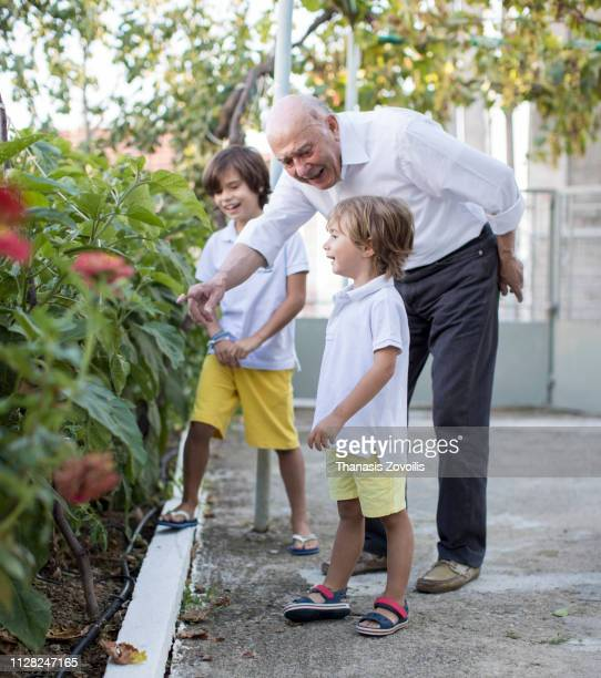 Grandfather with his grandchildren