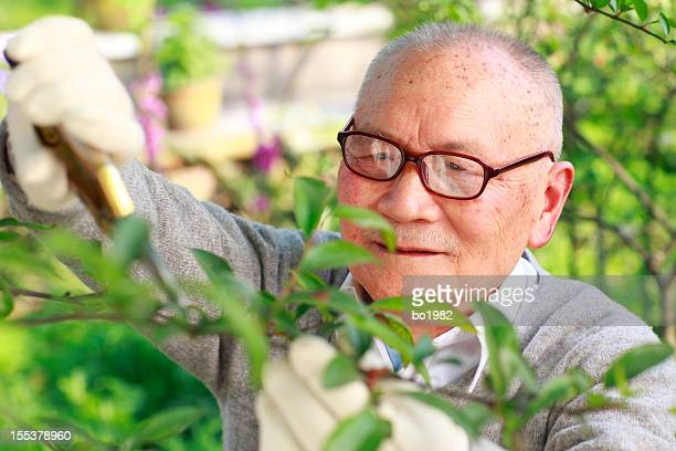 grandfather working in the garden