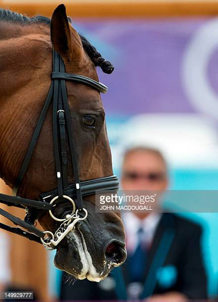 Grandioso the horse of Spain's Martin Dockx passes by a judge during the Grand Prix Dressage event of the 2012 London Olympics at the Equestrian...