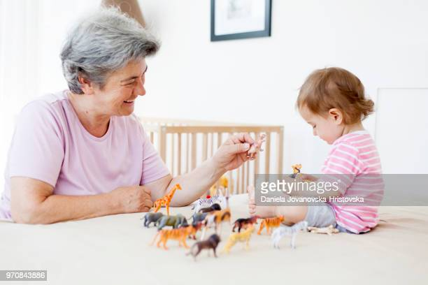 grandma and baby girl  playing with toy animals - toy animal stock photos and pictures