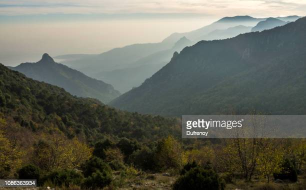 grandmont - alpes maritimes stock pictures, royalty-free photos & images
