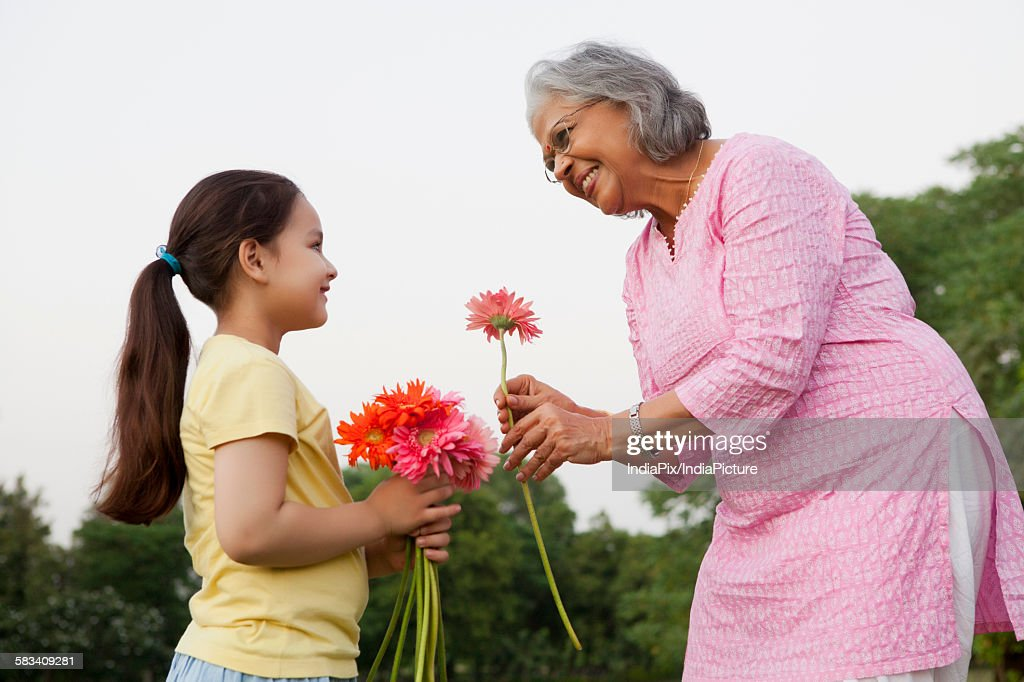 Grandmother accepting a flower from granddaughter : Stock Photo