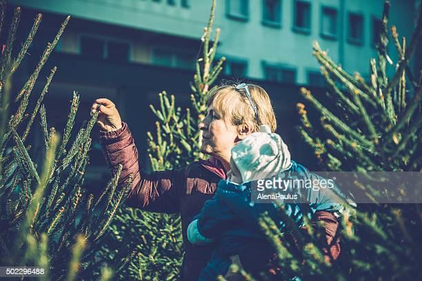 Grandmother and baby boy choosing christmas tree