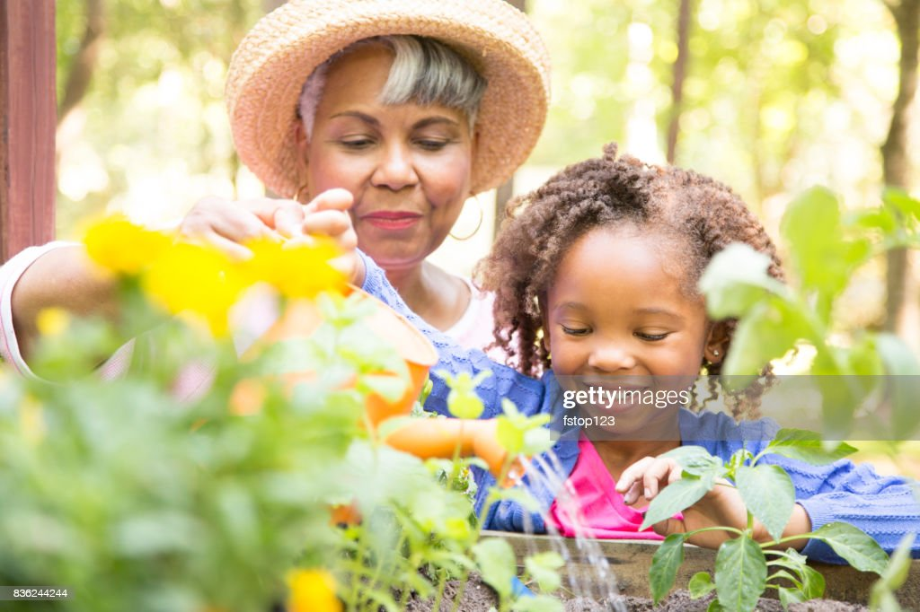 Grandmother and child gardening outdoors in spring. : Stock Photo