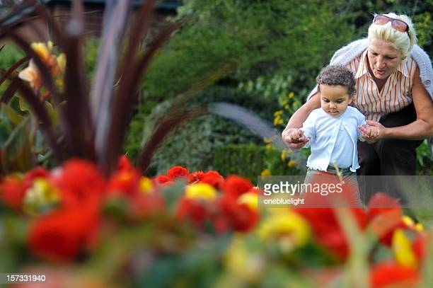 Grandmother Helping her Granddaughter with First Steps ( serie)