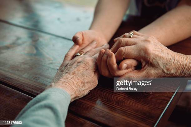 grandmother holding hands with granddaughter - great granddaughter stock photos and pictures