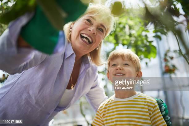 grandmother standing with grandson in garden - verantwortung stock-fotos und bilder
