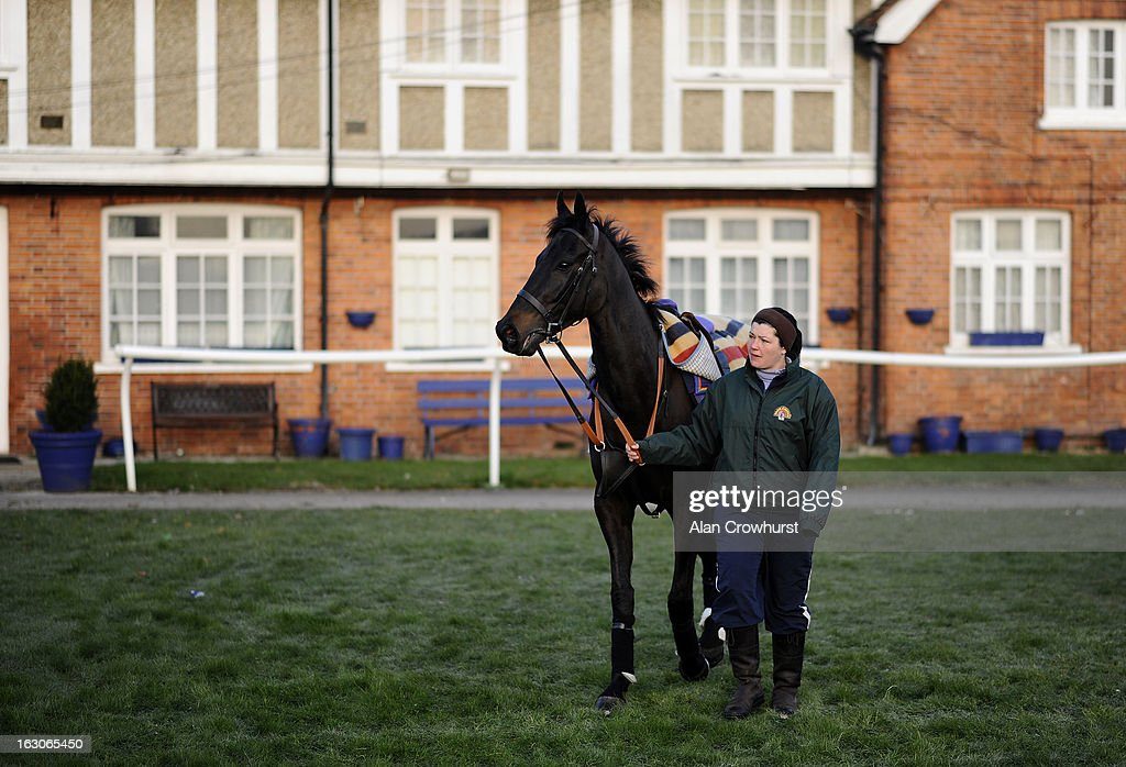 Grandouet is led round before returning to Lambourn due to frosty ground conditions at Newbury racecourse on March 04, 2013 in Newbury, England.