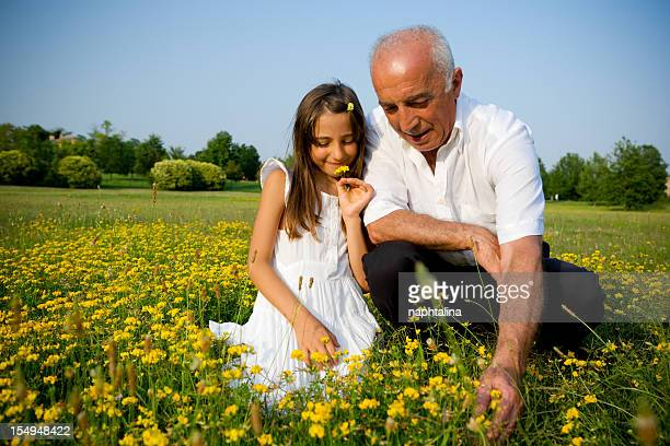 grandpa and niece collecting flowers - niece stock photos and pictures
