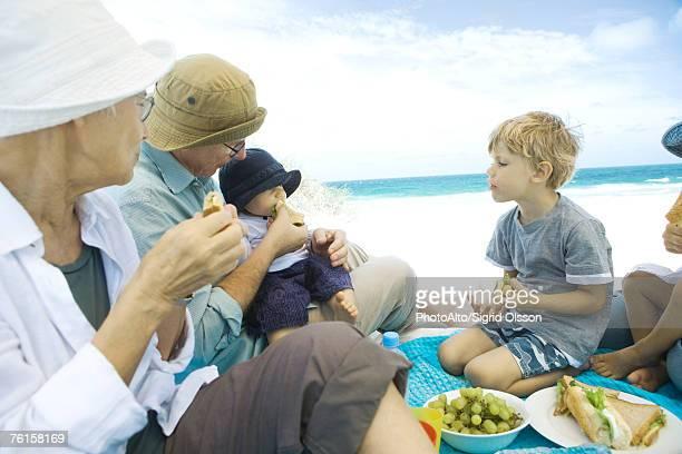 Grandparents and grandchildren having picnic on beach